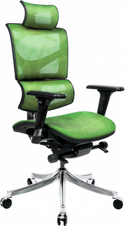Офисне крісло GT Racer X-D18 Green